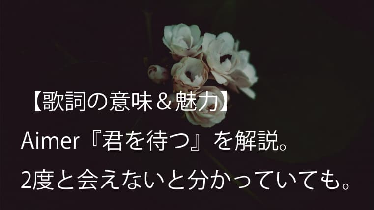Aimer(エメ)『君を待つ』歌詞【意味&魅力】|ドラマ『クロハ〜機捜の女性捜査官〜』主題歌